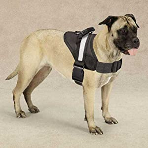 Guardian Gear Excursion Pet Harness, Small