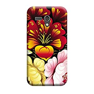 CaseLite Premium Printed Mobile Back Case Cover With Full protection For Moto G (Designer Case)