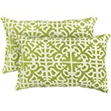 Greendale Home Fashions Rectangle Indoor/Outdoor Accent Pillows, Grass, Set of 2