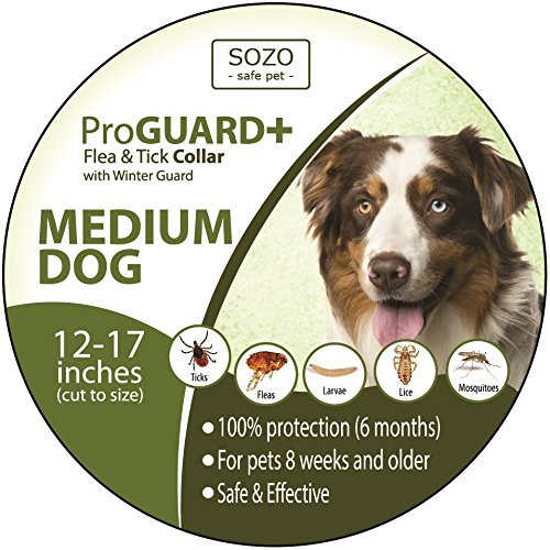 Flea Tick Collar - MEDIUM DOG - ProGuard Plus II (safe pet protection from pest bites infestations larvae lice mosquitoes) (Antler Hose compare prices)
