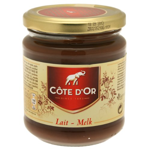 Cte-DOr-Pte--Tartiner-au-Lait-et-au-Cacao-Lait-Melk-300-g