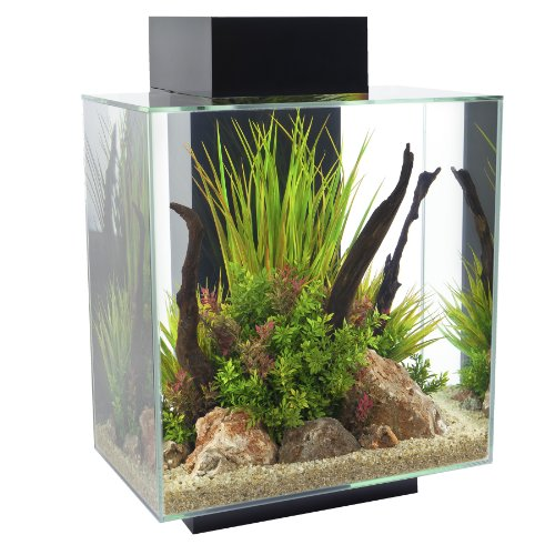 Best 10 gallon aquarium kit fish tanks for sale cheap review for Amazon fish tanks for sale