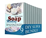 img - for DIY Super Bundle: Incredible and Very Easy to Make DIY Projects book / textbook / text book