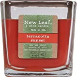 Candle-lite New Leaf  8-1/2-Ounce Jar with Soy Wax, Terracotta Sunset