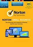 Norton Small Business-10 Device [Online Code]