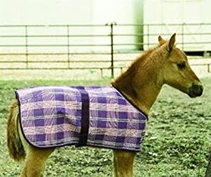 Kensington KPP Foal Protective Fly Sheet, Plum Ice Plaid, Foal