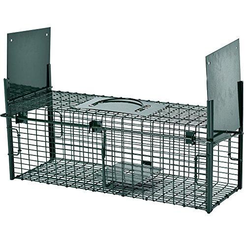 garten spa garten katzen und marderabwehr seite 6. Black Bedroom Furniture Sets. Home Design Ideas