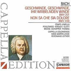 Geschwinde, ihr wirbelnden Winde, BWV 201: Labt das Herz, ihr holden Saiten (Chorus)