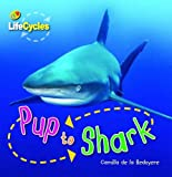 Pup to Shark (Qed Lifecycles)