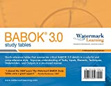 img - for BABOK 3.0 Study Tables book / textbook / text book