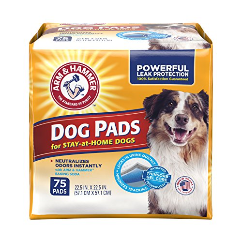 Arm & Hammer Ultra Absorbent Adult Dog Pads, 75 count (Arm And Hammer Backing Soda compare prices)