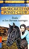 3. Les Secrets du poney-club : Etoile et les chevaux sauvages