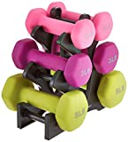 AmazonBasics 20-Pound Dumbbell Set with Stand
