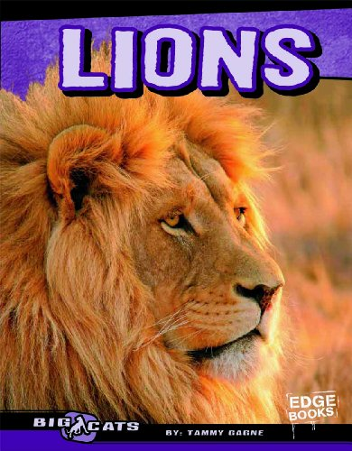 Lions (Edge Books)
