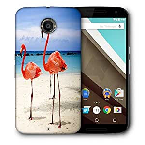 Snoogg Flamingos Printed Protective Phone Back Case Cover For LG Google Nexus 6