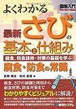 図解入門 よくわかる最新さびの基本と仕組み―腐食・防食の常識 (How‐nual Visual Guide Book)