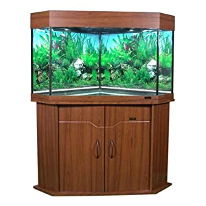 Corner Fish Tank on Brand New Large 187 Litre  41 Gallon  Corner Aquarium Fish Tank With
