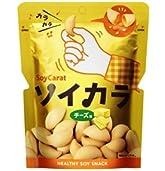 大塚製薬 ソイカラ(チーズ味)