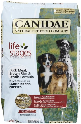Dog Life Stages front-982729