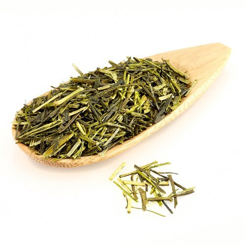 What Is Sencha Tea