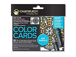 Chameleon 52 Piece Marker Set with Carry Case, Tweezers, Nibs and 4 Packs of Color Cards (1 Each Floral Patterns, Mirror Images, Mini Mandalas and Sweet Treats) (Bundle)