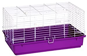 Pet Lodge Popup Rabbit Cages  150941