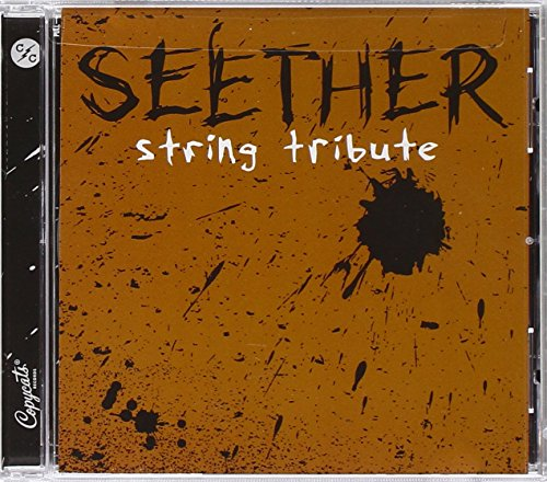 Seether String Tribute