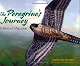 img - for The Peregrine's Journey: A Story of Migration book / textbook / text book