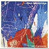 Veil of Gossamer by DAVE BAINBRIDGE (2005-03-08)