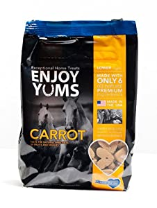 Enjoy Yums 1 Lb. bag Carrot Horse Treats.