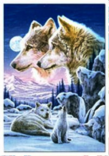 Picture of Educa Howling Cub Crop Jigsaw Puzzle 500pc (B000MRPNPI) (Jigsaw Puzzles)