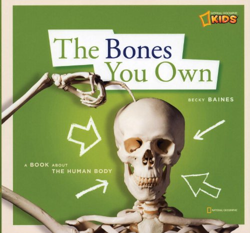 ZigZag: The Bones You Own