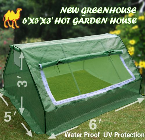 STRONG CAMEL New Greenhouse 6'X5'X3' Hot Garden