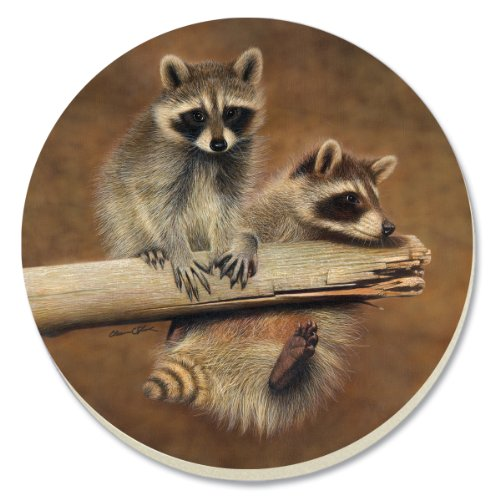 CounterArt Decorative Absorbent Coasters, Raccoon Buddies, Set of 4