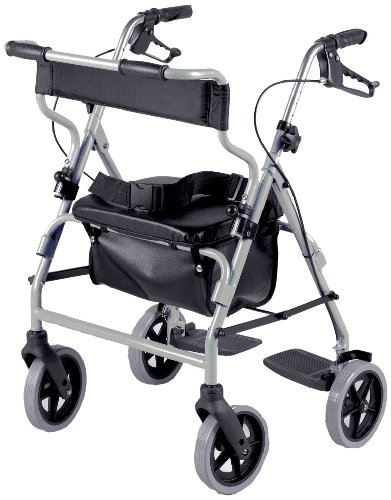 Rollator And Transit Chair Combination Silver