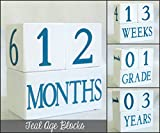 Baby Age Blocks: Shower Gift, Photo Prop & Nursery Decoration - Teal Age Blocks