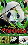 Pandas - Amazing Animals