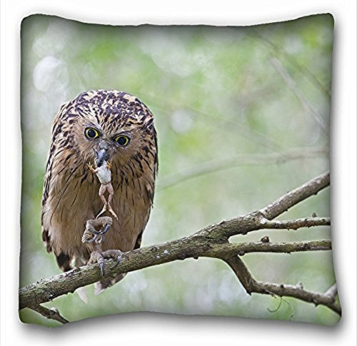 Decorativo Quadrato Throw Pillow Case animali rana ramo foglie Mining Killer Alberi gufo 18 x 18 in due lati