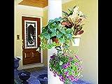 Garden Decor Vertical Hanging Tree Hugger w Three 6-Inch Pot Loops