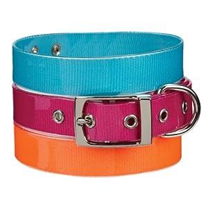 Guardian Gear PVC/Polyester Waterproof Dog Collar, 18-22-Inch, Bluebird