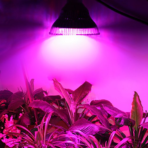 LVJING Led Grow light for Indoor Plant Veg and Flower Growing, 36W LED Plant Lamp for Garden Organic Herbs Bonsai Trees Hydroponic Mini Greenhouse Aquaponic Grow Tent, E26/E27 Socket (220v Hanging Heater compare prices)