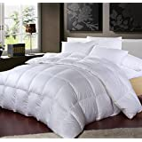 Luxurious 1000 Thread Count 100% Egyptian Cotton King / California King Siberian All Year Goose Down Comforter - 750FP, 50oz, 1000TC, White