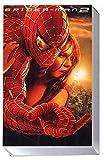 echange, troc Spider-Man 2 [VHS]