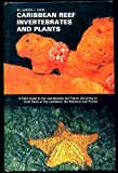 img - for Caribbean Reef Invertebrates and Plants: A Field Guide to the Invertebrates and Plants Occurring on Coral Reefs of the Caribbean, the Bahamas and Florida book / textbook / text book