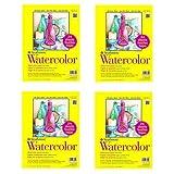 Strathmore Paper 300 Series Watercolor Class Pack, Cold Press, 1 Pack, Original Versio, 24 Sheets (F?ur ???k) (Tamaño: F?ur ???k)