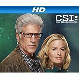 CSI: Crime Scene Investigation, Season 14 [HD]