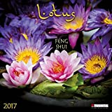 Lotus Feng Shui 2017: Kalender 2017 (Mindful Edition)