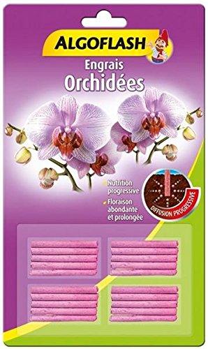 batonnets-engrais-orchidees-algoflash-x20