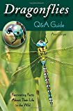 img - for Dragonflies: Q&A Guide: Fascinating Facts About Their Life in the Wild book / textbook / text book