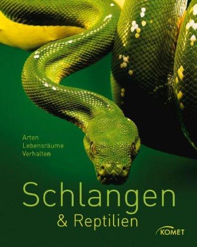schlangen-reptilien-arten-lebensraume-verhalten